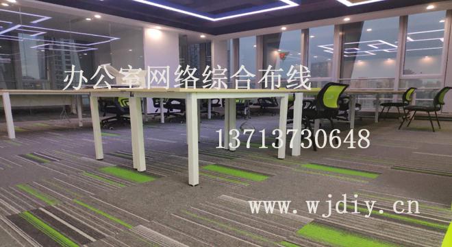 南山区高新园赛西科技大厦12楼某公司办公室网络综合布线.jpg