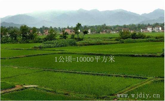 1公顷等于多少平方米 1亩等于多少平方米.jpg